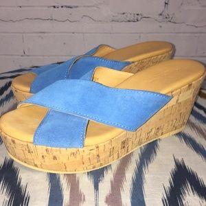 NWOB! Garnet Hill Pietra Blue Suede Wedge Sandals